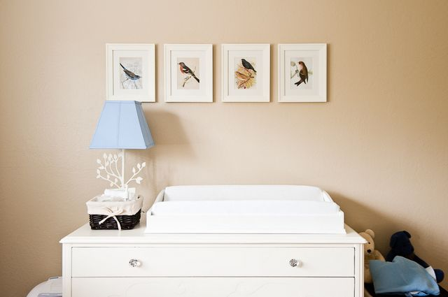 Baby Boy: Bird Theme Nursery Design