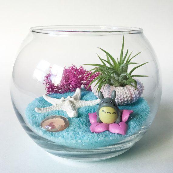 La serie de Totoro: Mágico viaje terrario Kit de Totoro incluye un recipiente de vidrio en forma de cuenco, arena arte azul ligero, una planta de aire mexicanos Saintpaulia, rosa musgo de Reno, una concha de erizo de mar color rosa pálido, una estrella de mar nudos blanqueado, una joya