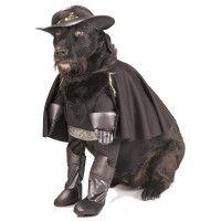 zorro-dog-halloween-costume-1.jpg