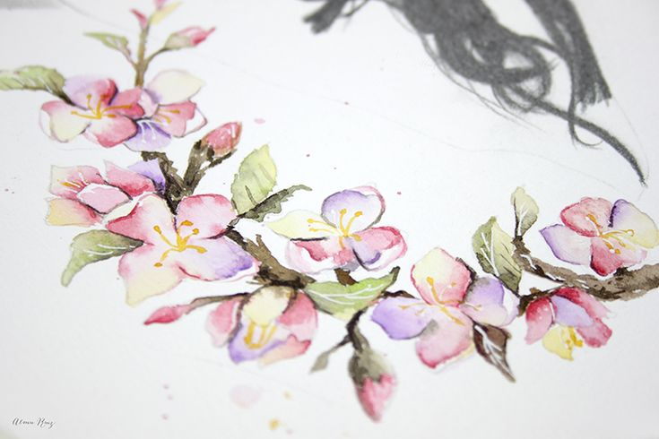 Acuarela flor de almendro. Almond tree flower painted with watercolor