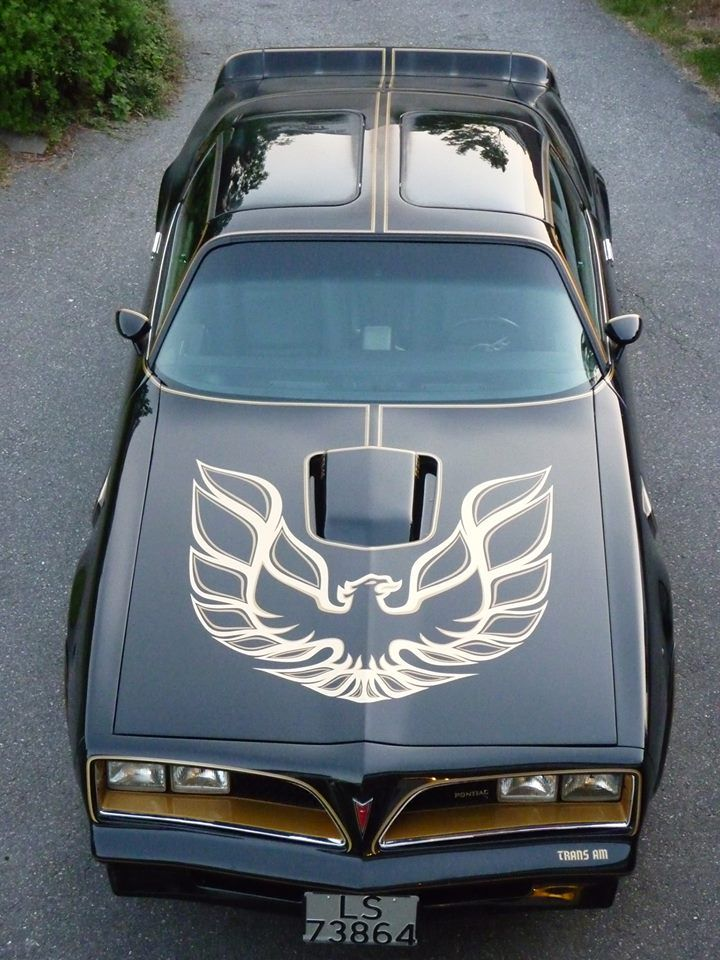 1977 Pontiac Trans Am..Re-pin..Brought to you by #CarInsurance #EugeneOregon and #HouseofInsurance