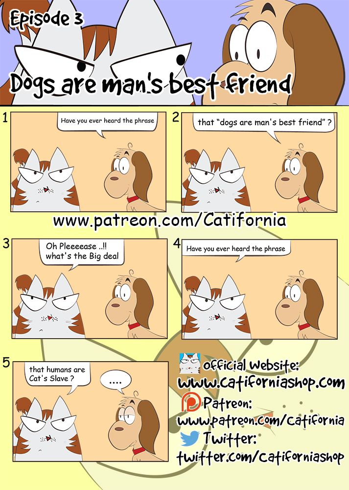 Mow Meow and Dum Dumb Episode 3 Dogs are man's best friend.  Click Like and Leave a Comment if You believe Your Cat's always manipulating You to get what they want.