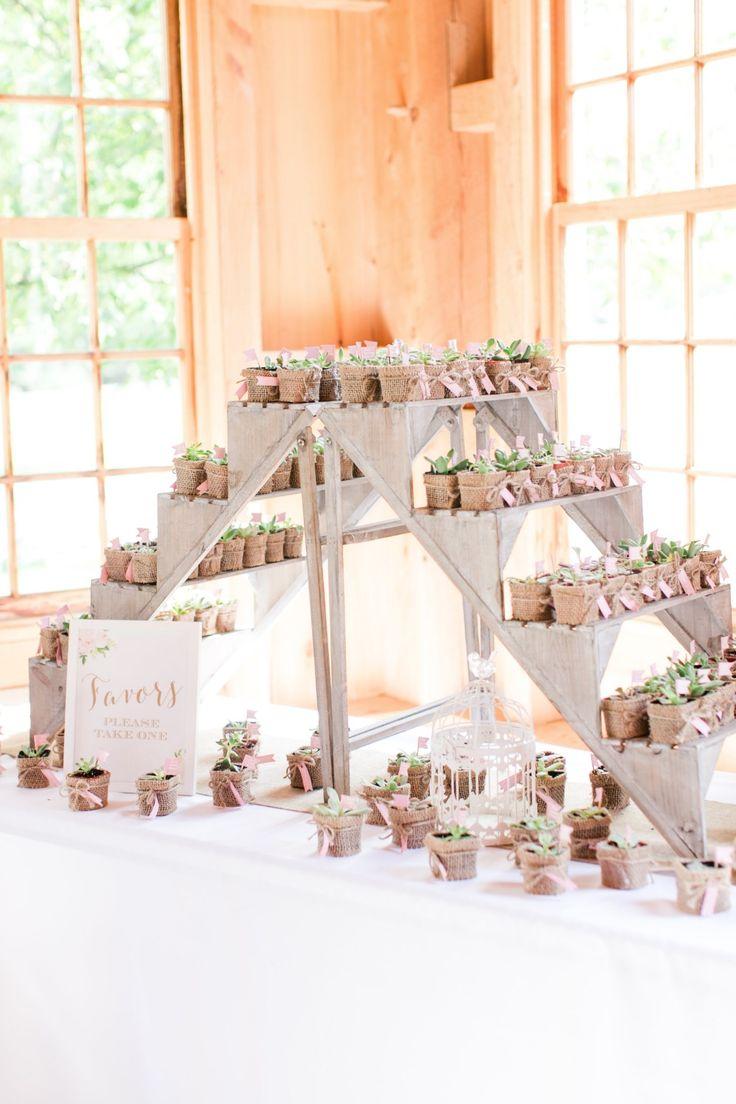 succulent wedding favors succulent wedding favors Succulent wedding favors