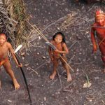 Oil Company Pulls Out of Amazonian Land Inhabited by Uncontacted Tribes