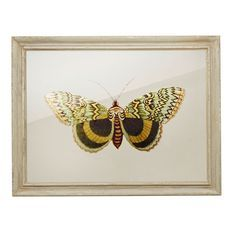 Discounted & Sale Products | Oliver Bonas - Oliver Bonas