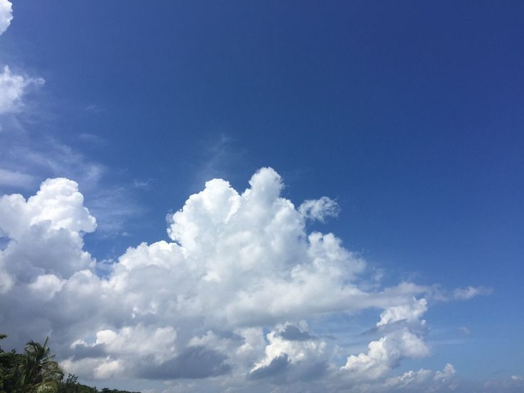 [P]風の流れで形を変える雲