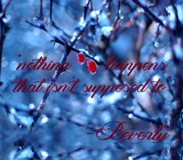 """""""Nothing happens that isn't supposed to."""" Quote from the movie, Winter's Tale."""