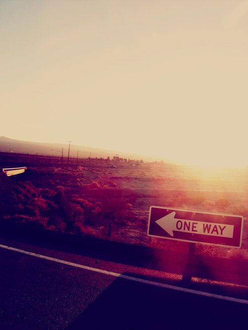Oh, roadtrips. Sometimes, they're all we want in life.