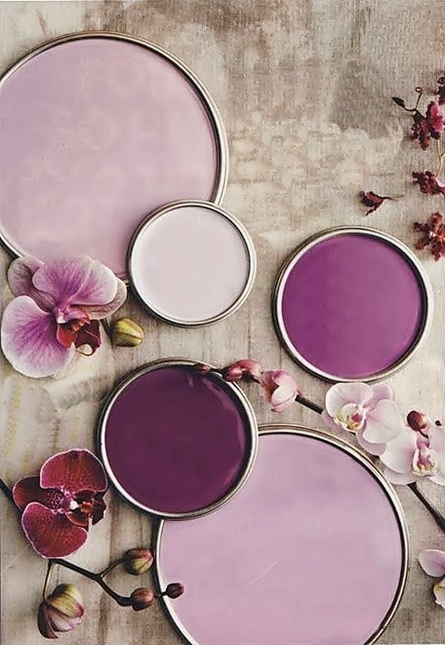 Paint by Benjamin Moore in orchid tones (Radiant Orchid, Pantone's colour of the year, via Decor8)