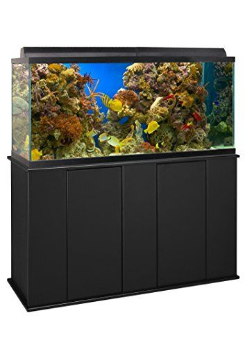 Best 25 75 gallon aquarium ideas on pinterest aquarium for 75 gallon fish tank dimensions