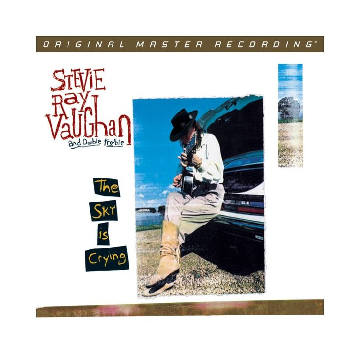 273 Best And Then There S Stevie Ray Vaughan Images On