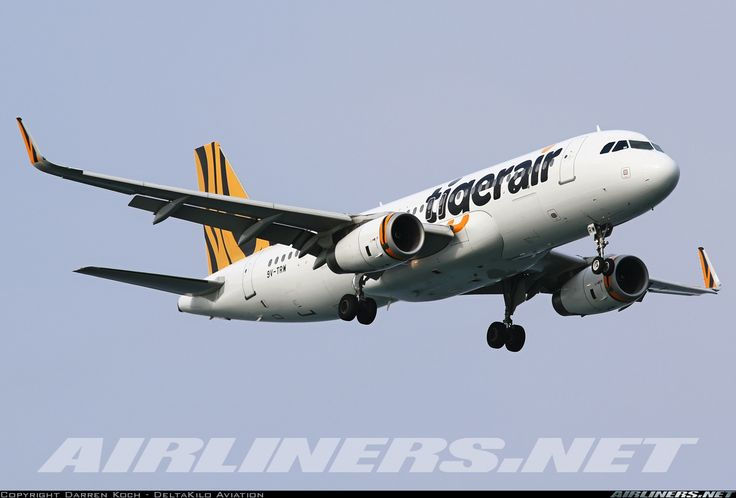 Airbus A320-232 - Tigerair   Aviation Photo #4159667   Airliners.net