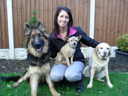 About Muddy Paws Mobile Dog Grooming Staffordshire and Cheshire