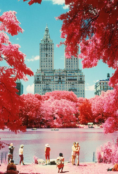 Central Park, The San Remo