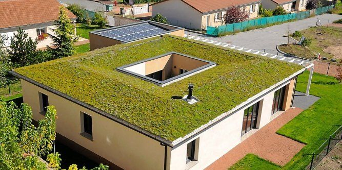 2349 Best Theory Of Green Roofs Images On Pinterest