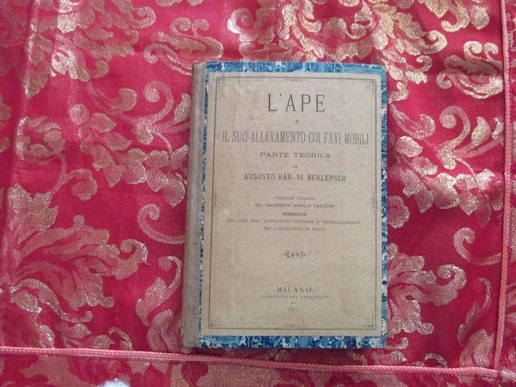 L APE E IL SUO ALLEVAMENTO CON FAVI MOBILI 1874