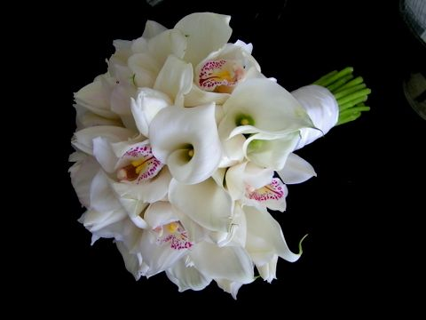 Here Is A Beautiful Wedding Bouquet Of Calla Liliy Tulips And White Cymbidium Orchid