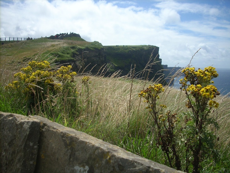 Cliffs of Moher in Ireland: Travel Places, Travel Destinations