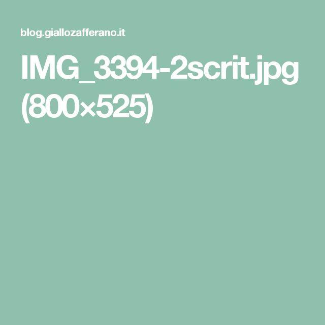 IMG_3394-2scrit.jpg (800×525)