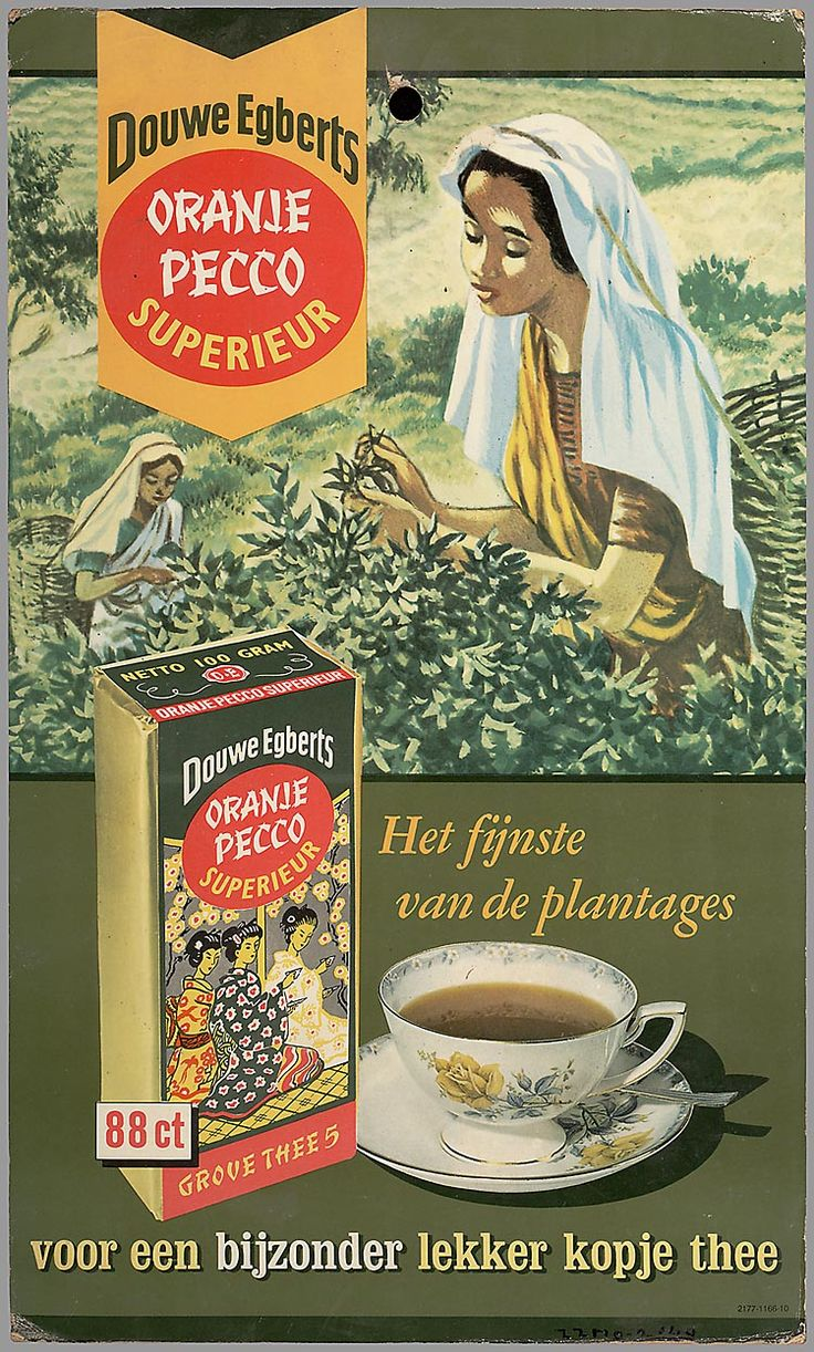 Douwe Egberts Oranje Pecco Superieur Dutch tea ad or poster ... scene of women picking tea with tea package and cup and saucer, mid 20th century, Holland/The Netherlands