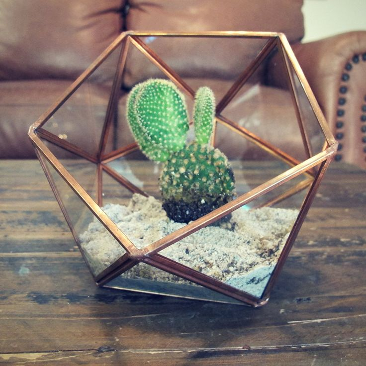 Rose Gold Glass Plant Terrarium - Large Geometric Terrarium, Perfect for Air Plants and Succulents - Would love for an earthy modern bridal shower