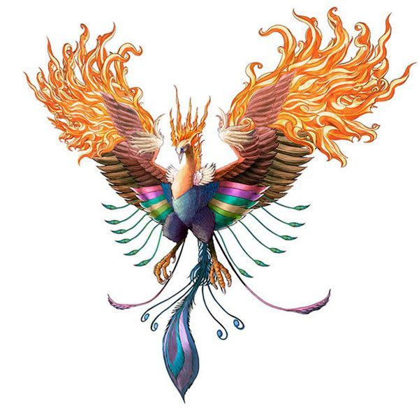 9 best images about AVE FENIX on Pinterest | On, Tatuajes and ...