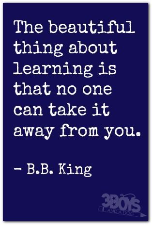 The beautiful thing about learning is that no one can take it away from you.