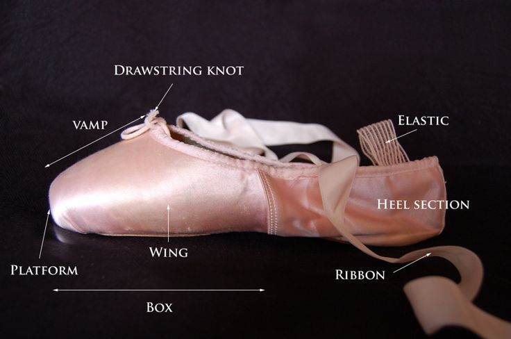 Parts of Pointe Shoe - side view