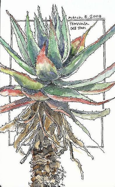 artwork by Jane La Fazio