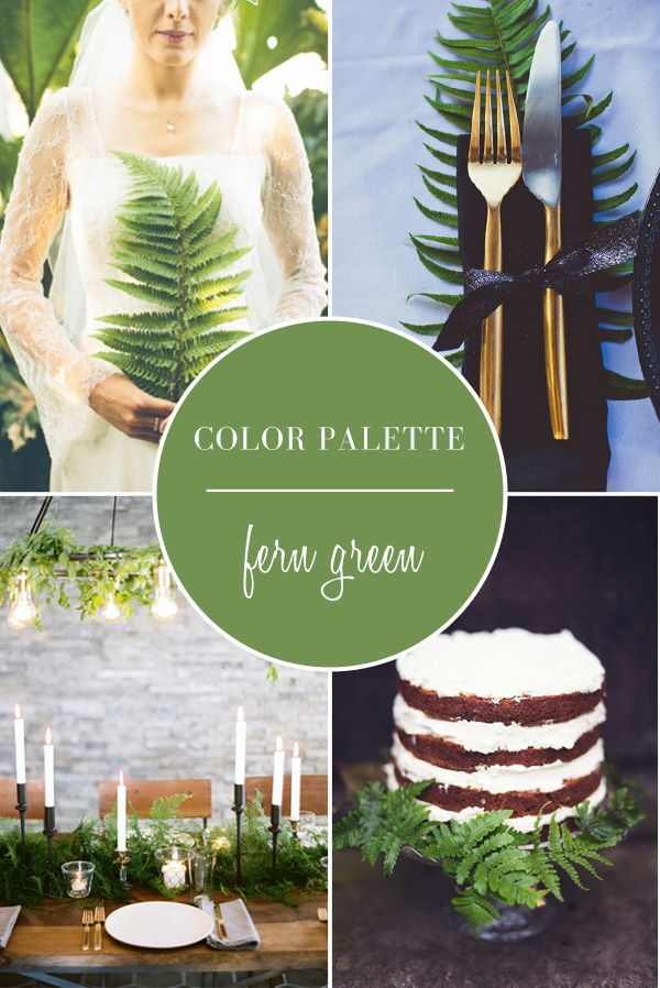 Wedding Color Palette | Fern Green Color Palette featured on tahoeunveiled.com