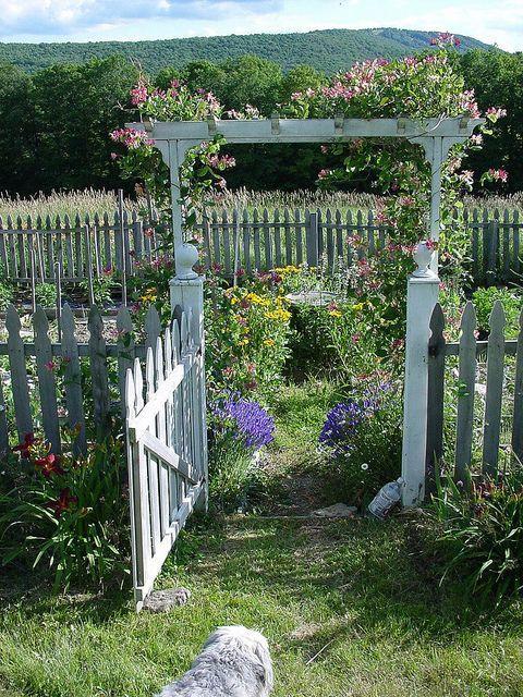 Classic Garden Gate