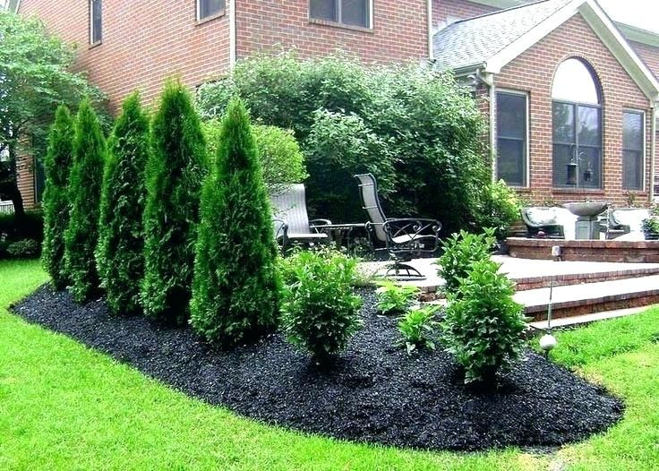 Landscaping Privacy Backyard Landscape Ideas For Privacy