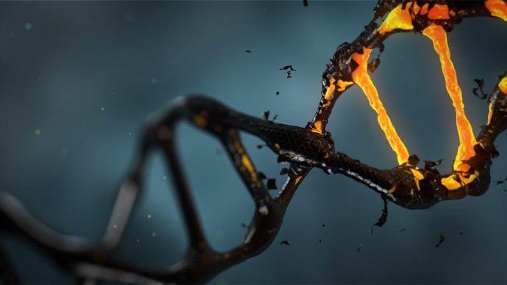 Il DNA studiato per essere utilizzato come sistema di archiviazione dati