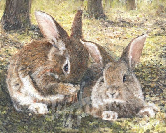 Rabbit pet portrait portrait painting or fine art print of