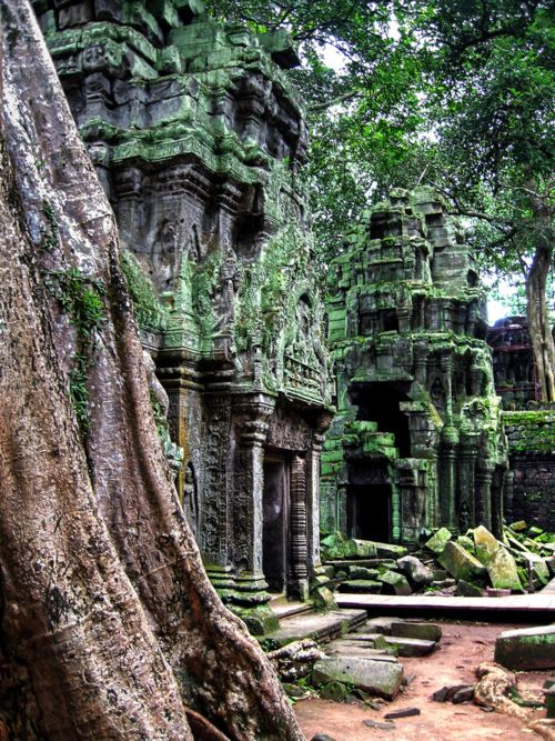 forrest ruinBuckets Lists, Stunning Ancient, Wat Temples, Abandoned Temples, Lists Destinations, Beautiful Places, Angkor Wat Cambodia, Dreams Destinations, Ancient Architecture