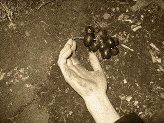 El sabor de la uva despertaba el instinto asesino de Jack el Destripador