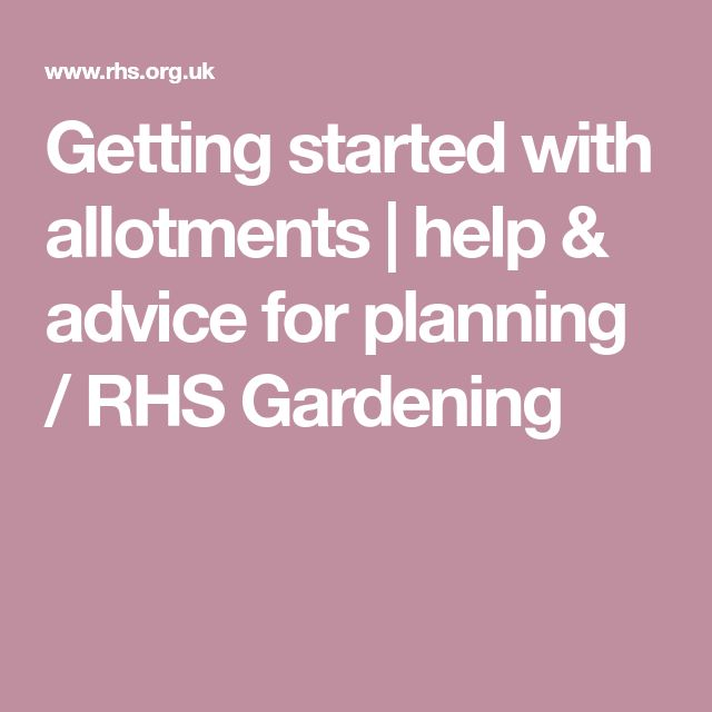 Getting started with allotments   help & advice for planning / RHS Gardening