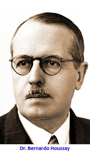 En 1909, el estudiante de medicina Bernardo Houssay fue nombrado profesor en la Facultad de Agronomía y Veterinaria (UBA). Allí dio sus primeros pasos antes de recibir el premio. Por Pablo Roset (SLT-FAUBA) — Pedro, en Medicina hay un alumno sobresal