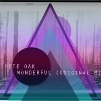 Pete Oak - Wonderfull (Original Mix) FREE DOWNLOAD by Pete Oak on SoundCloud