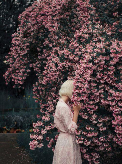 magic-spelldust: Bloom II by Econita