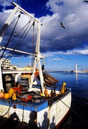 Attenzione al fermo pesca!! Amanti del pesce, ricordatevi che sta per arrivare il fermo pesca! Dall'8 agosto al 15 settembre infatti i pescherecci italiani resteranno in porto, permettendo alle specie di pesci di riprodursi, ripopolando così le nostre acque. Non preoccupatevi però: potrete sempre gustare pesce estero o decongelato!  Seguici su www.frescopesce.it Foto [@Corbis.com]