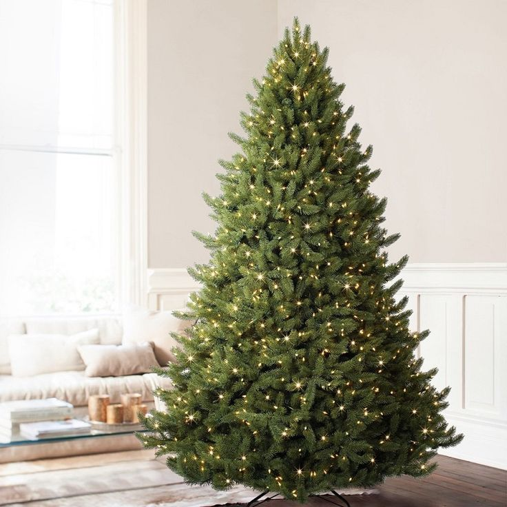 83 best O Christmas Tree images on Pinterest Christmas time, Merry