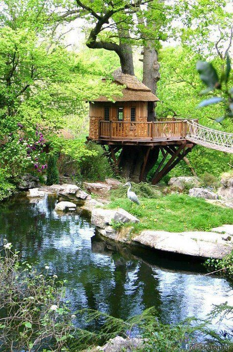 Treehouse over a creek - how perfect! - would make a great writing hideout!