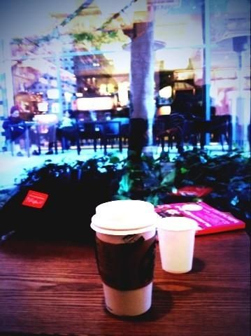 Starbucks coffee TSUTAYA Daikanyama スターバックス代官山蔦屋