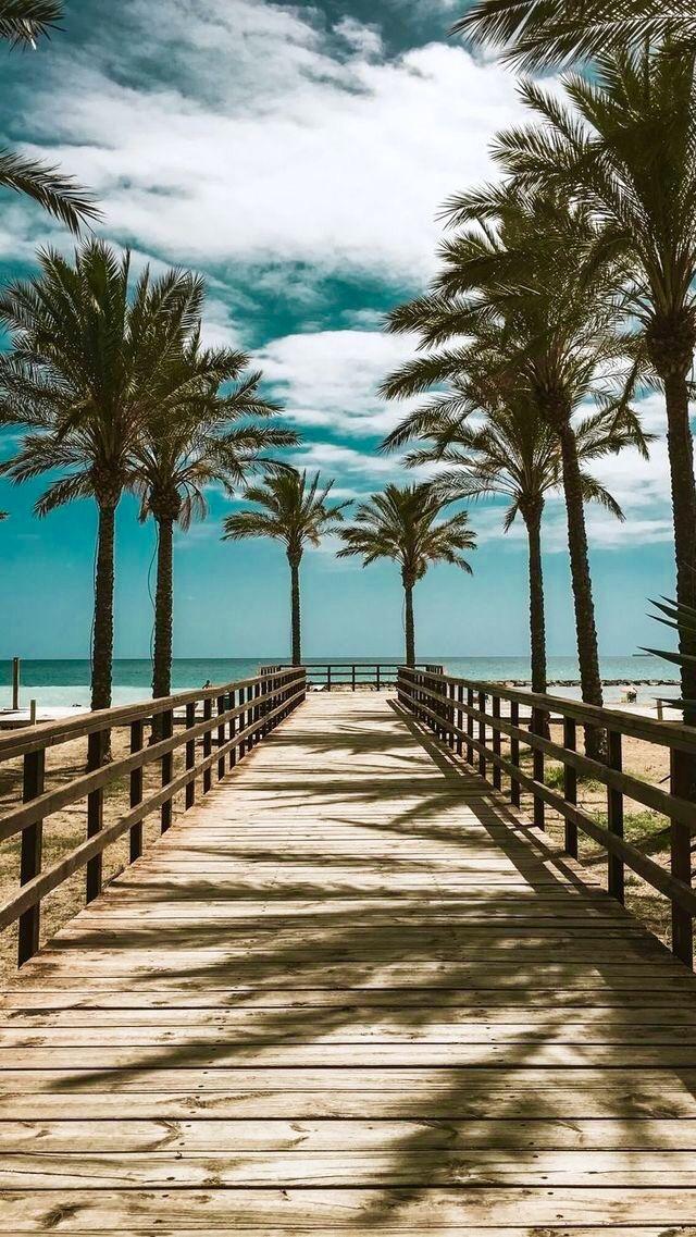 ⚡️ Beachlife Wishilivedhere Beautiful Tumblr Jealous