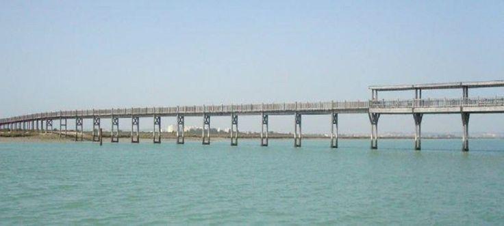 Puente de los Toruños 1-Pto.Sta.María-Cádiz