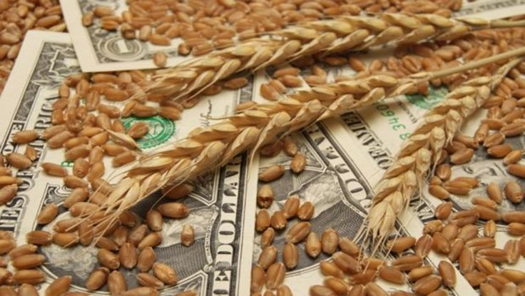 If you are looking to invest money in agricultural commodities in london then commodity basis is one of the best option for you, because commodity basis traded in Commodity Cash, Basis and Futures prices for Oilseeds, Oils, Meals and Grains. We provide latest agricultural commodities news, analysis on physical commodities in London and global Agriculture Commodity sectors.