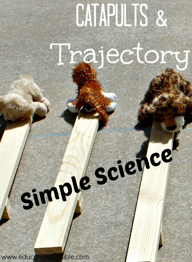 Learning about trajectory with catapults Education Possible
