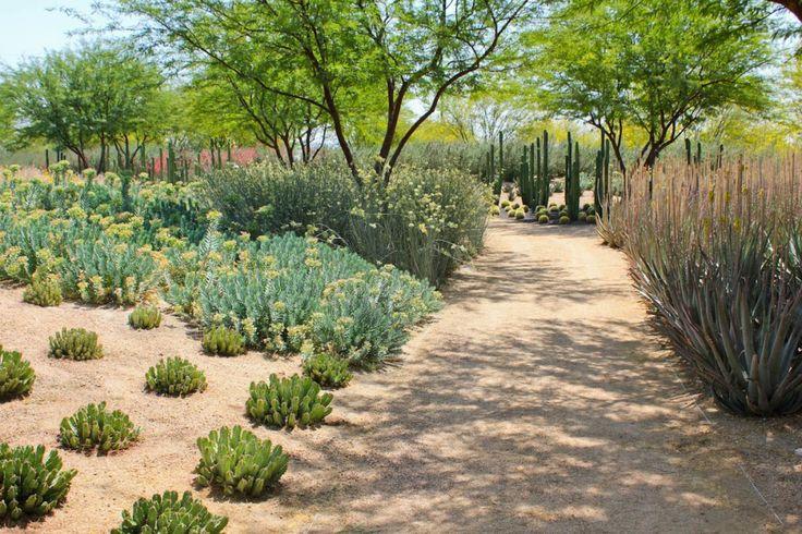 James Burnett Landscape Architecture Annenburg Sunnylands Center Retreat Rancho Mirage