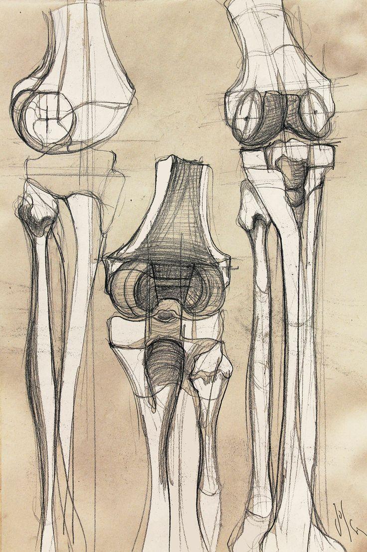 Miho kaneko 1 137 images quotes - Trunk Bones By Golsa Golchini Via Creattica